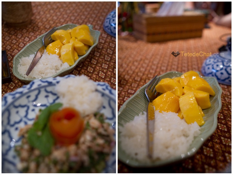 cuisine_thai_mangue_riz_collant