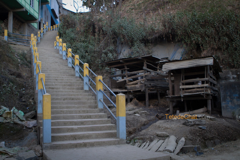 escalier_porc_chamhai