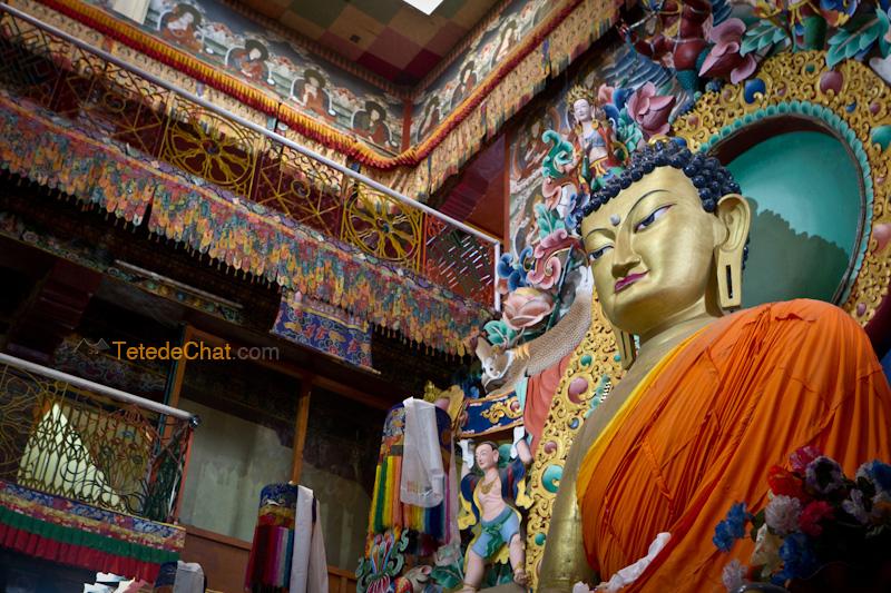 Galden_Namgey_Lhatse_tawang_bouddha