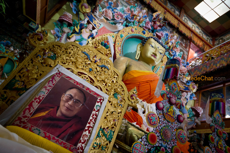 Galden_Namgey_Lhatse_tawang_portrait_dalai_lama