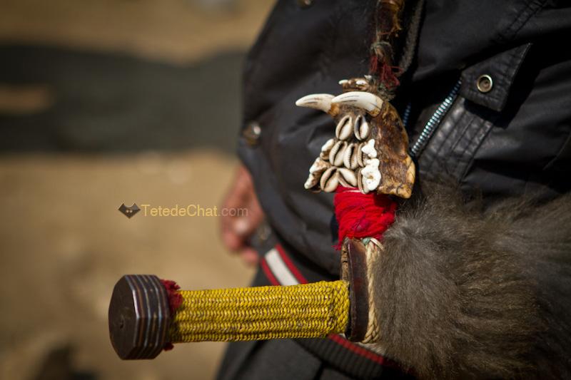 arunachal_pradesh_epee_tigre_pokhu_village