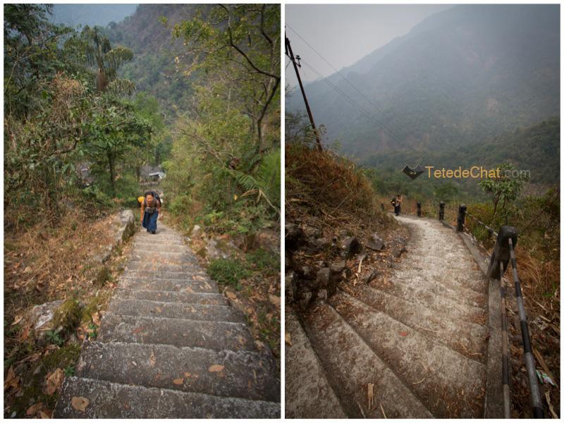escaliers_nongriat_hihi_2