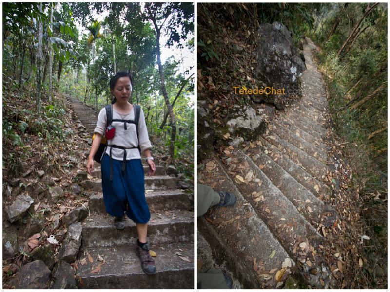 hihi_escaliers_nongriat