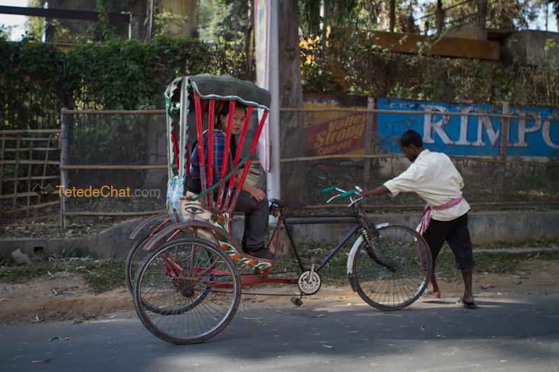 hihi_rickshaw_argatala
