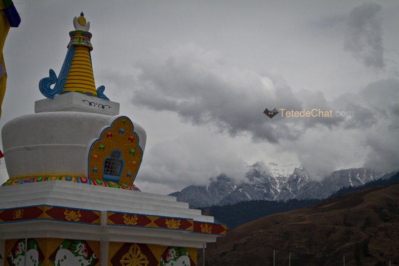 mechuka_stupa