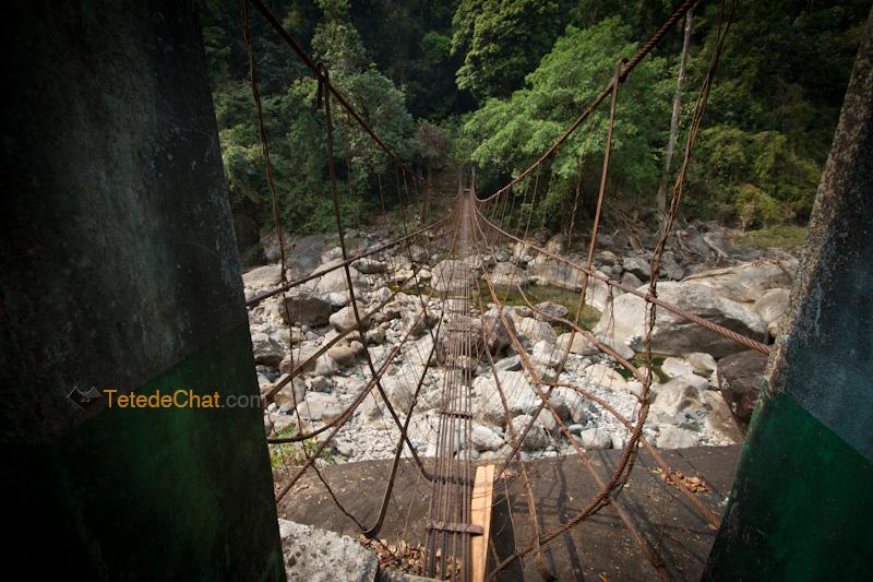 pont_suspendu_nongriat