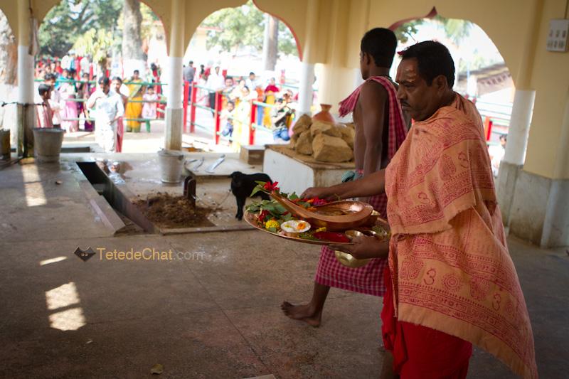 rituels_tripura_sundari_temple