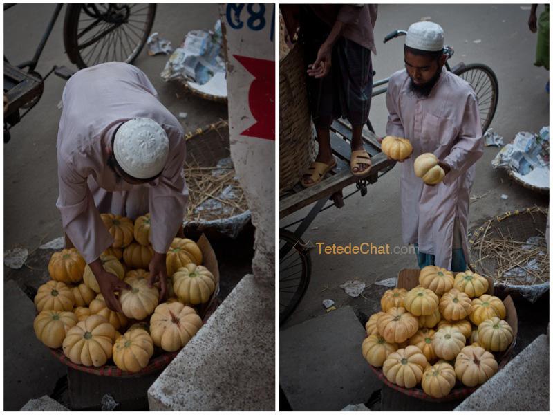 melon_bangladesh