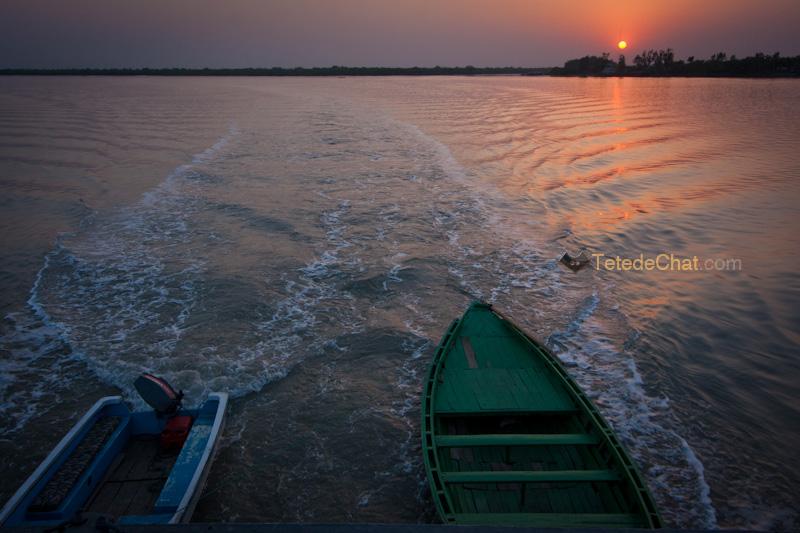 barques_sundarbans_bangladesh