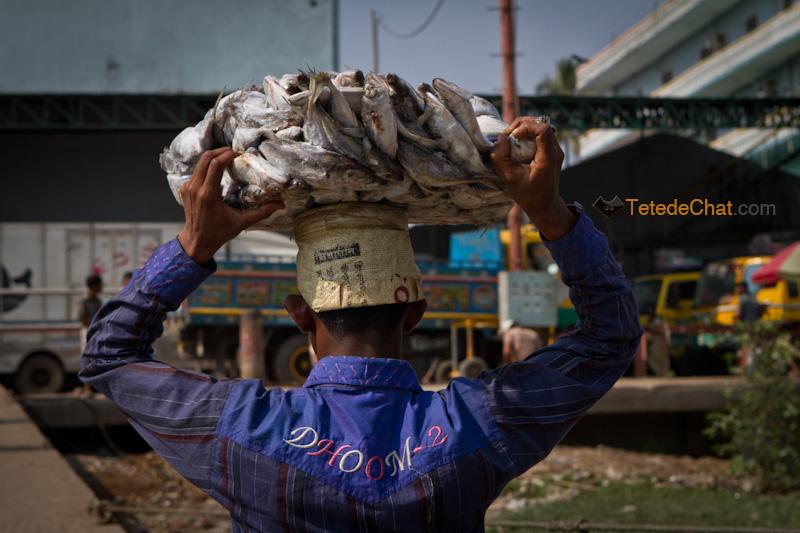livreur_poissons_chittagong_arriere