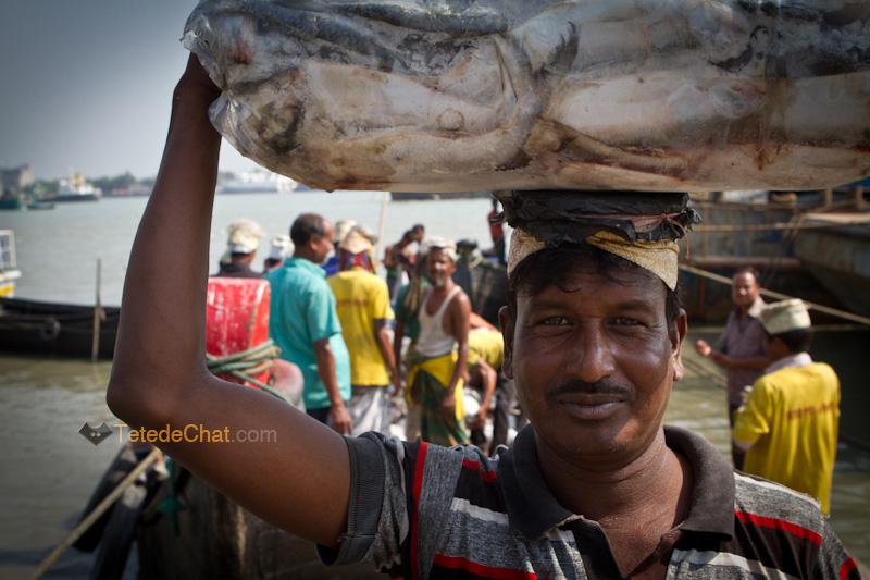 livreur_poissons_chittagong_portrait