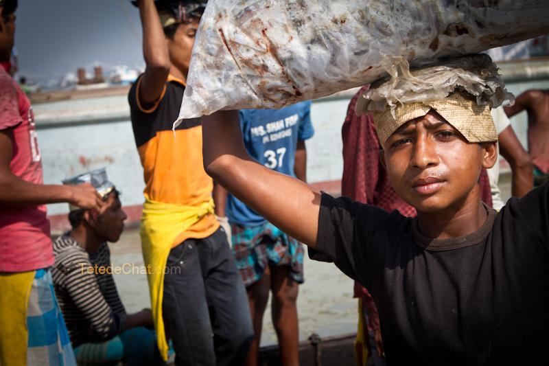 livreur_poissons_chittagong_portrait_4