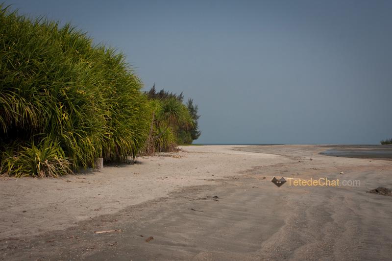 paysage_st_martin_bangladesh_4