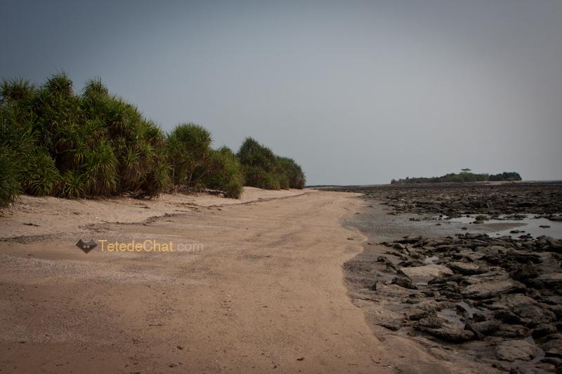 paysage_st_martin_bangladesh_5