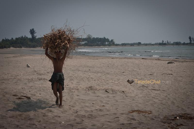 porteur_bois_st_martin_bangladesh