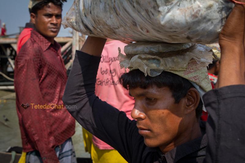 portrait_livreur_poissons_chittagong
