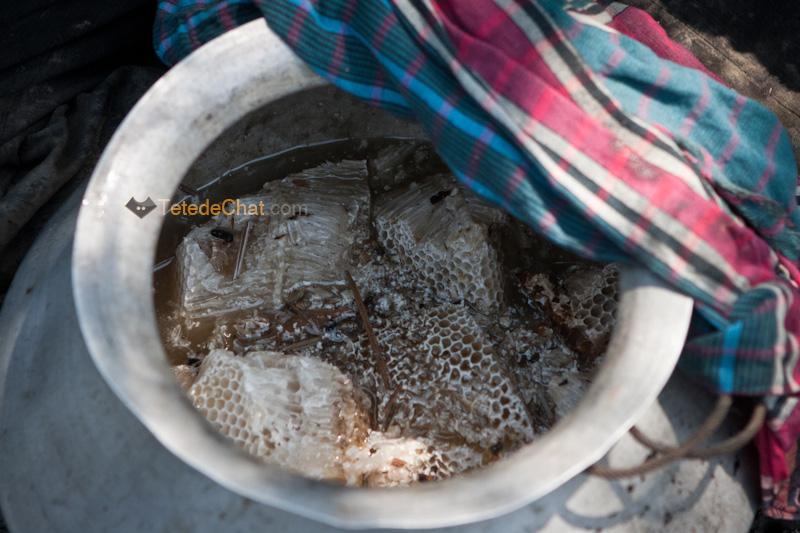 pot_miel_chasseur_sundarbans_bangladesh_6