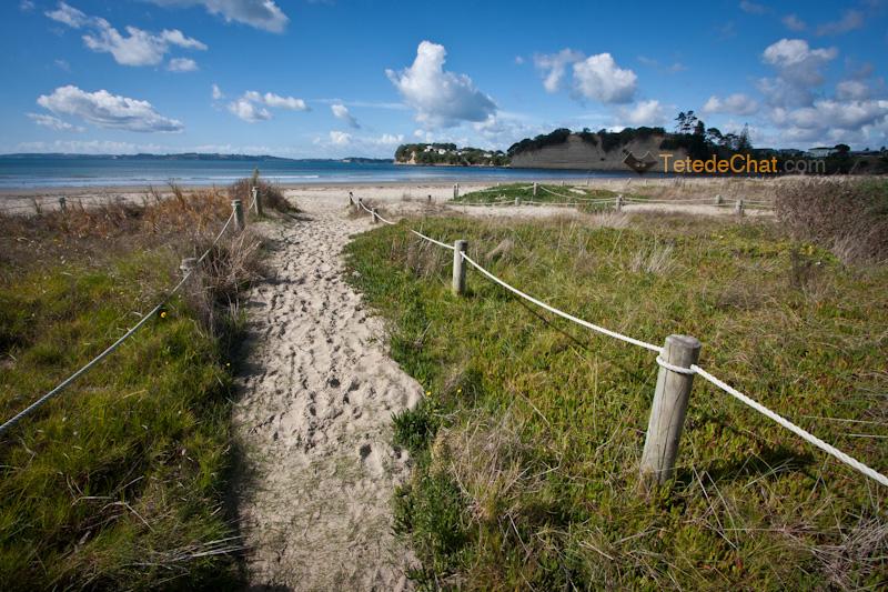 Préparer Un Road Trip En Nouvelle Zélande Conseils Nouvelle