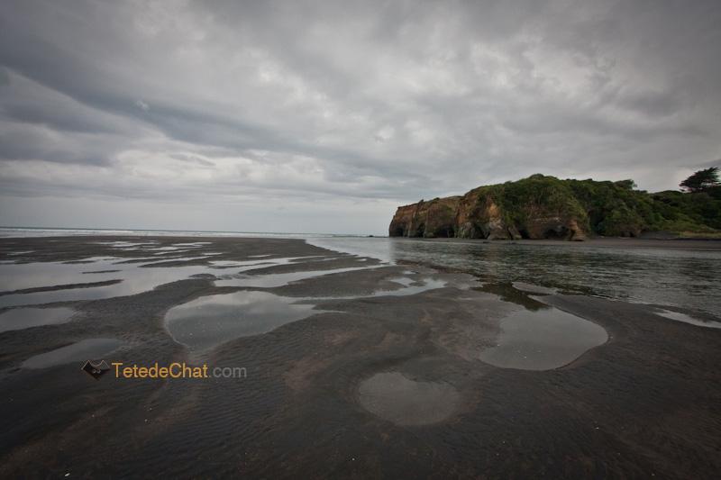 paysage_nouvelle_zelande_nord_13