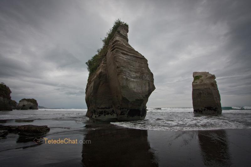 paysage_nouvelle_zelande_nord_15