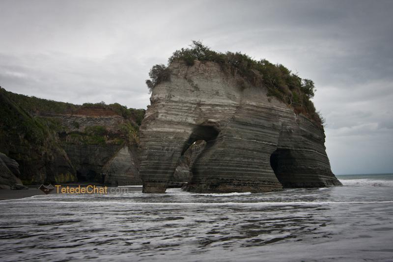 paysage_nouvelle_zelande_nord_elephant