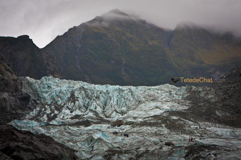 franz_josef_glacier_3