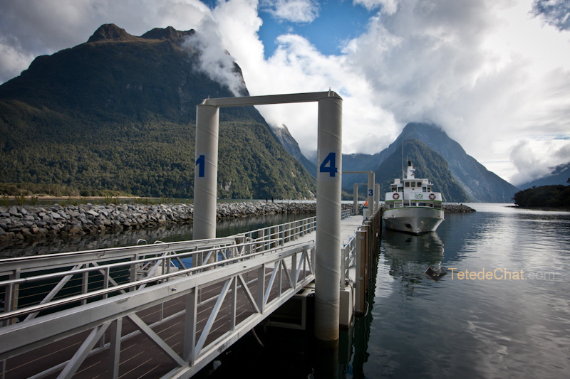 milford_sound_port