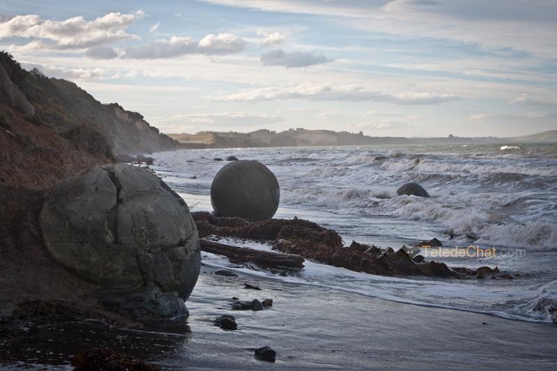 moeraki_boulders_plage