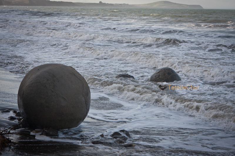 moeraki_boulders_plage_2