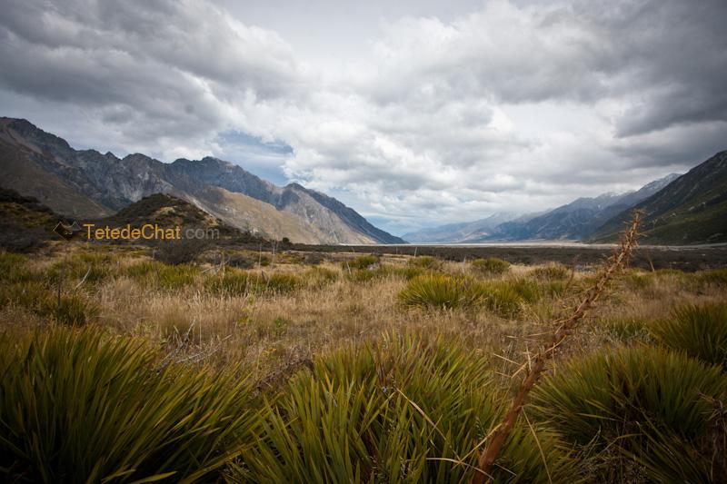 paysage_tasman_trek_NZ