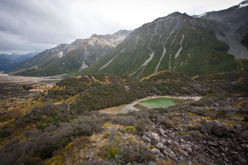 paysage_tasman_trek_NZ_2