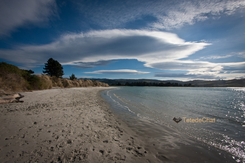 plage_doctors_point_ile_sud_NZ
