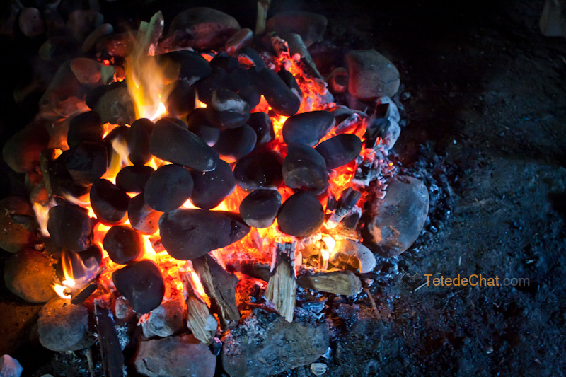 cuisine_millennium_trekking_village