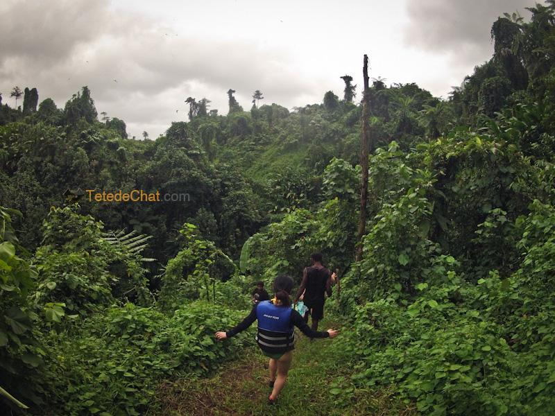 millennium_trekking_vanuatu