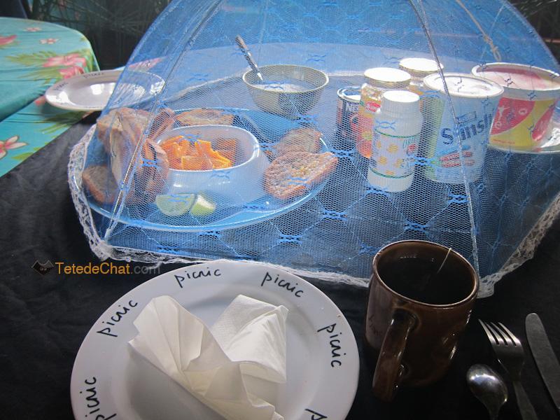 petit_dejeuner_tanna