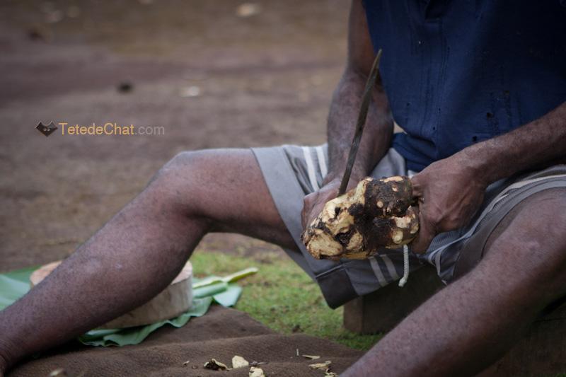 preparation_kava_vanuatu_espiritu_santo