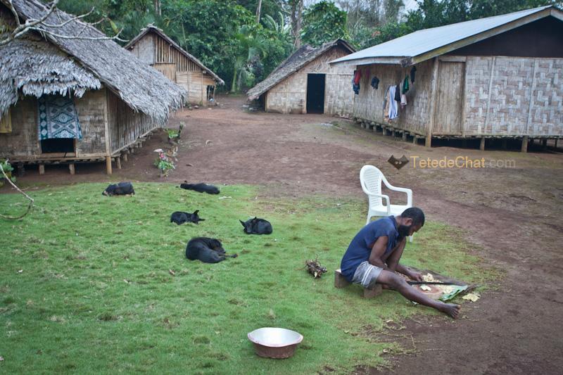 preparation_kava_vanuatu_espiritu_santo_chien