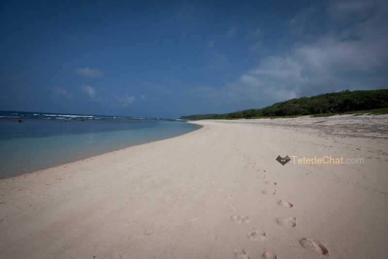 tanna_plage_blanche_port_resolution_2