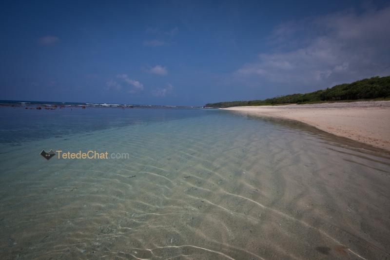 tanna_white_beach_port_resolution