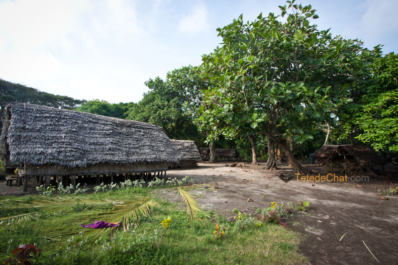 village_port_revolution_tanna