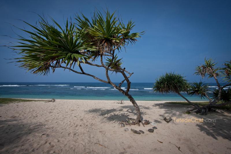 white_beach_tanna_2