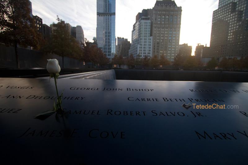 9_11_memorial_rose_2