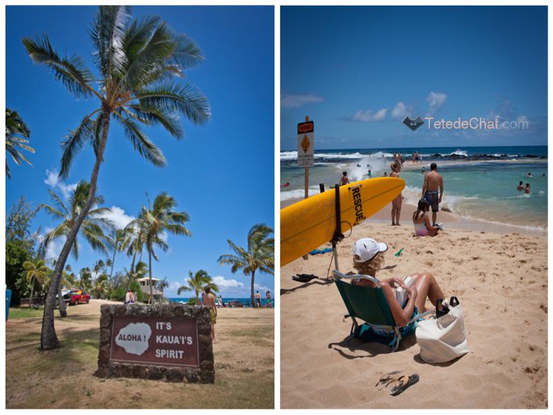 Kauai_plage_surf