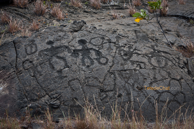 Petroglyphes_pu_u_loa_4