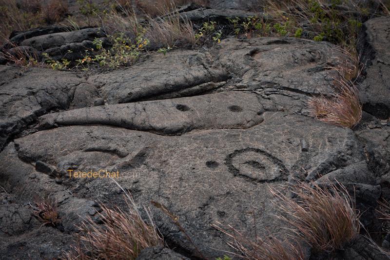 Petroglyphes_pu_u_loa_5