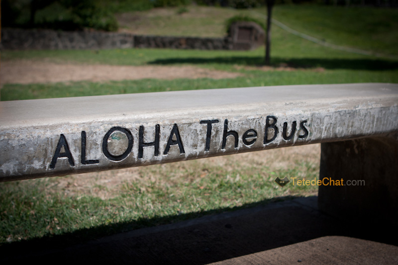 banc_aloha_the_bus