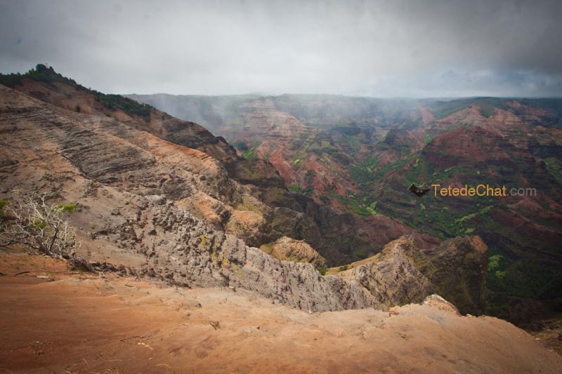canyon_waimea_6
