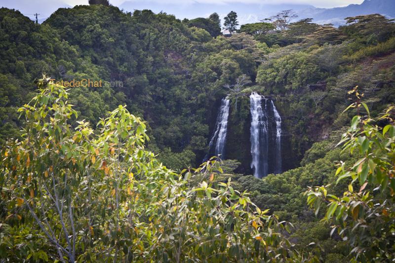 cascade_kauai