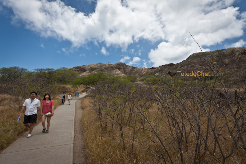 chemin_diamond_head