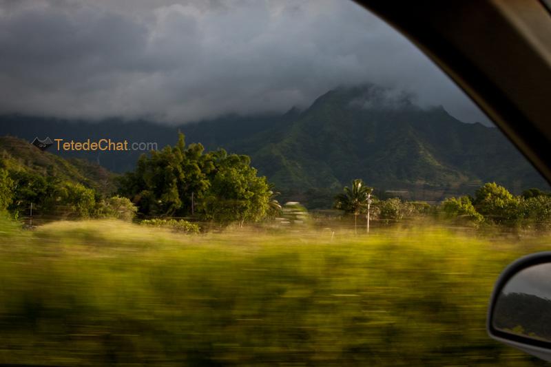 dans_la_voiture_kauai